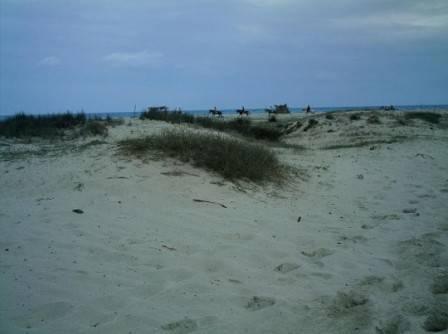 Sanddüne blaue Lagune.jpg