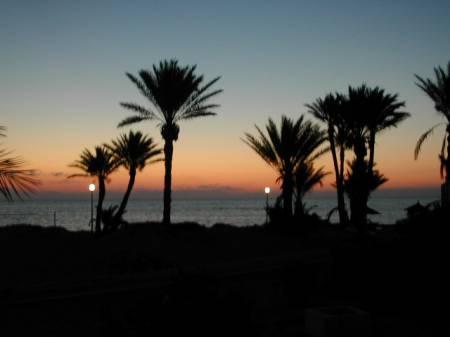 Djerba 2004 049.jpg